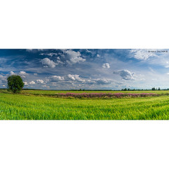 _DSC6975-Panorama