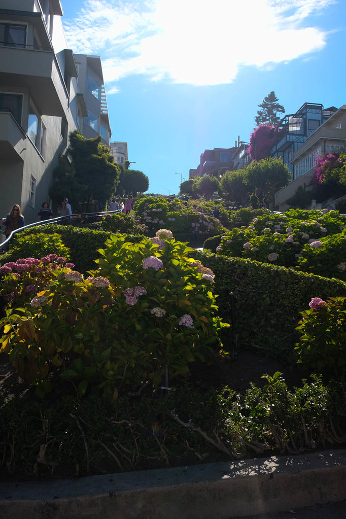 Lombard Street | Free Things to do in San Francisco