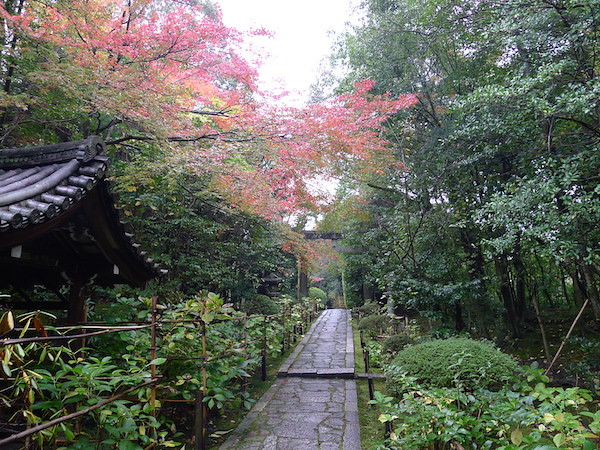 225-Kyoto