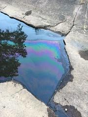 2017 Auburn Big Rig Spill