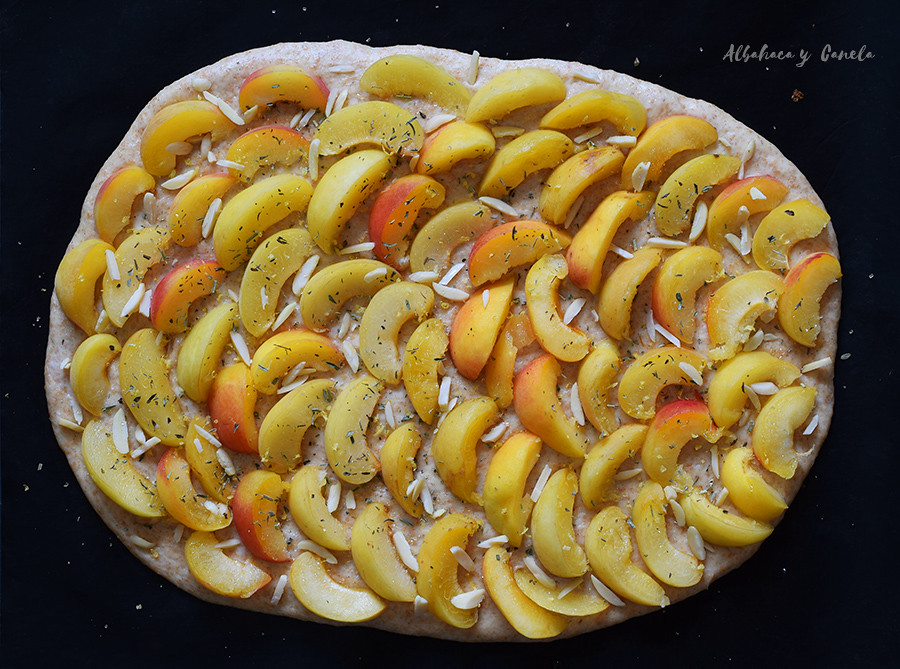 Aprikosen-Hefekuchen