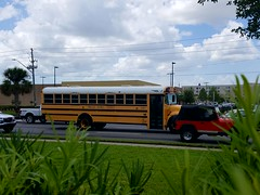 20817 - 2008 IC CE300 - Pinellas County School Bus