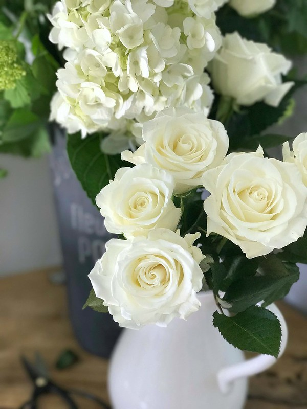 book-blogs-white-roses
