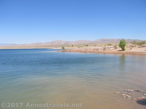 Swimming at Echo Bay in Lake Mead National Recreation Area, Utah