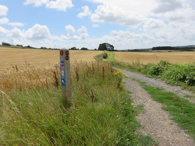 North Downs Way - Lenham to Wye