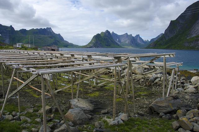 Stockfish racks