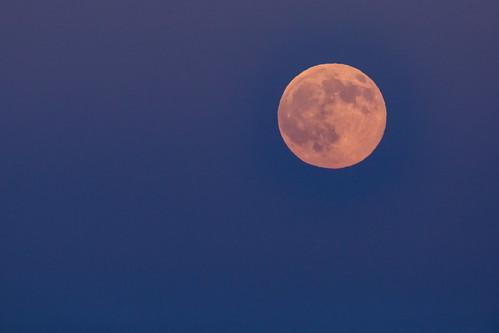 Summer Full Moon