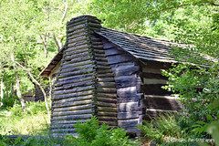 Cabin in Honor of Squire Boone