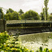 20170717-05_Weir - Footbridge - Lilies - River Leam - Royal Leamington Spa