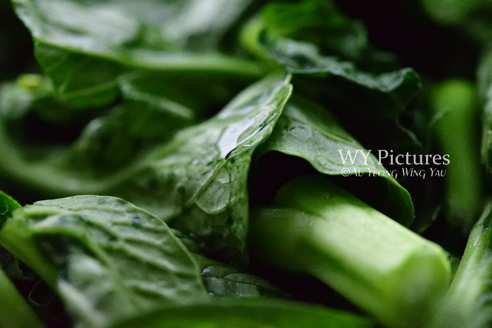 Healthy Dark Green Vegetables