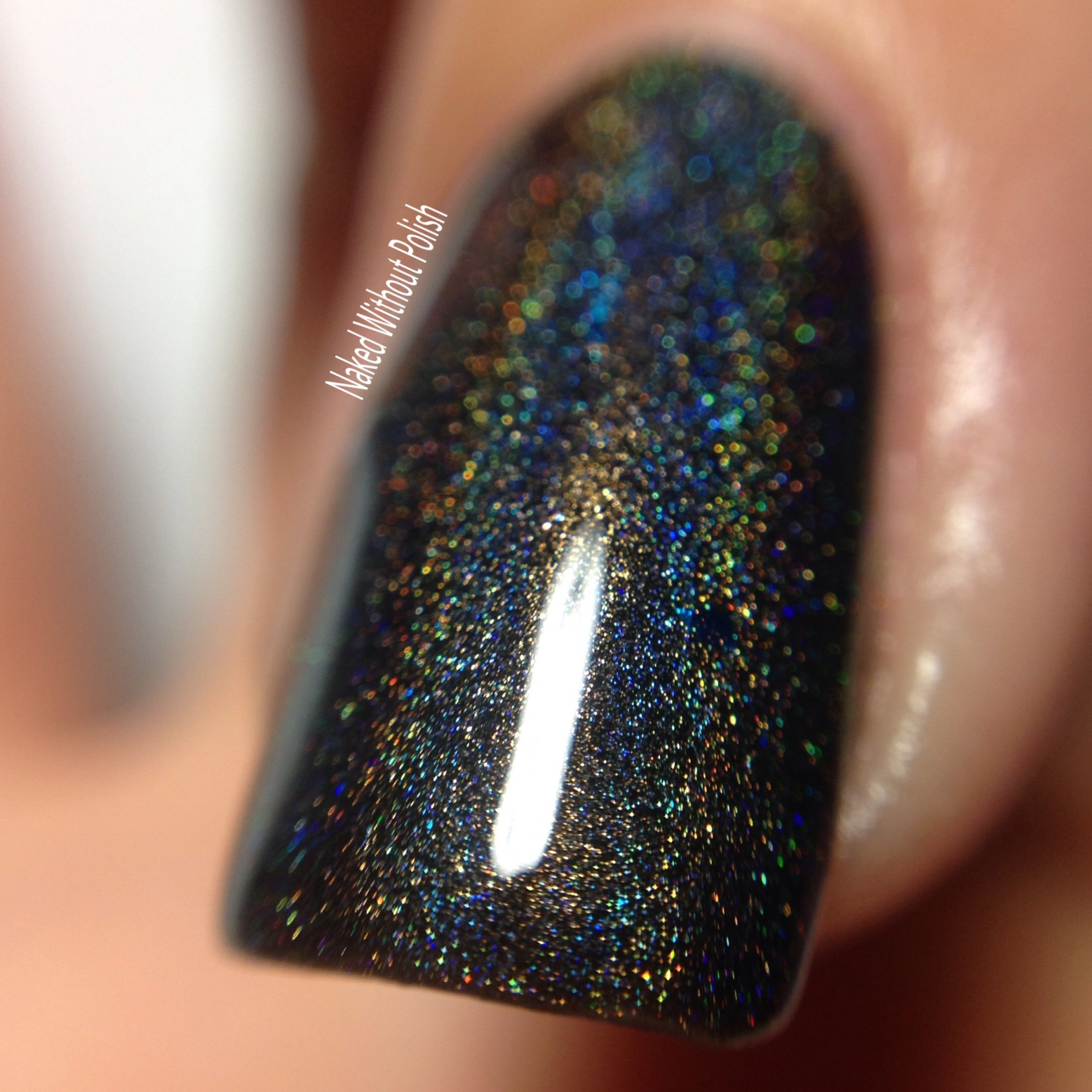 Octopus-Party-Nail-Lacquer-Logan-9