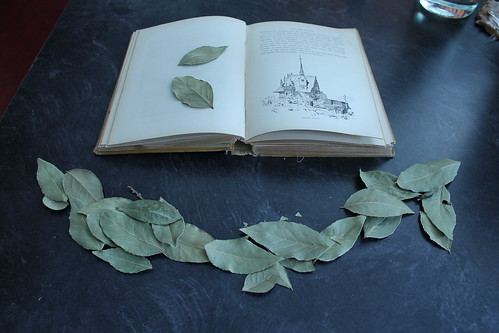 bay leaves and book