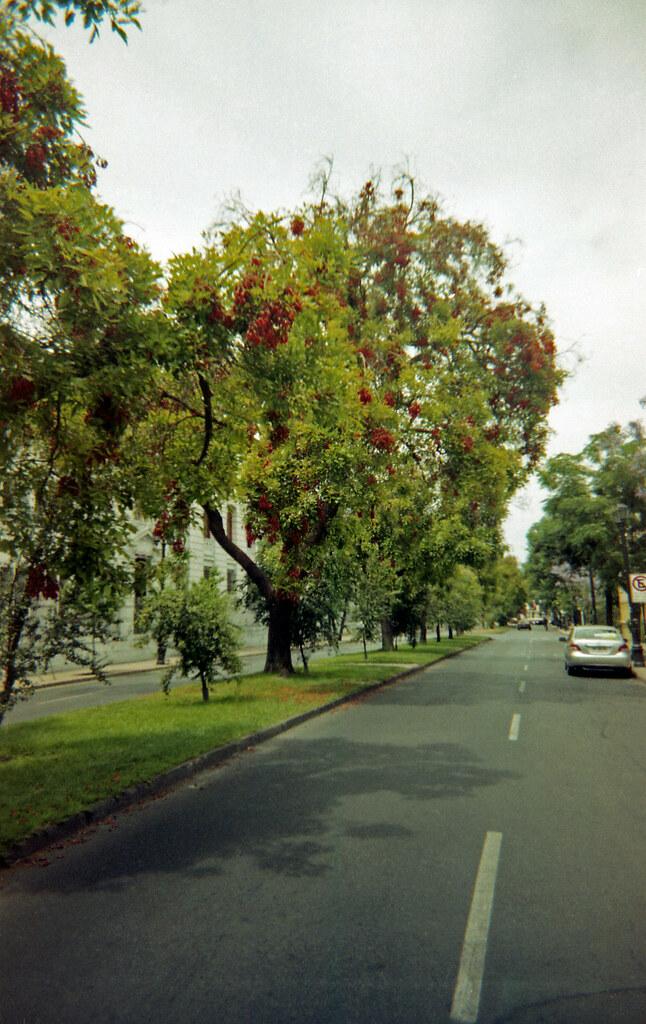 Santiago Centro [neg.color]