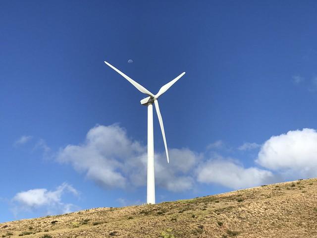 Windmill 2017-07-14-08.51.11