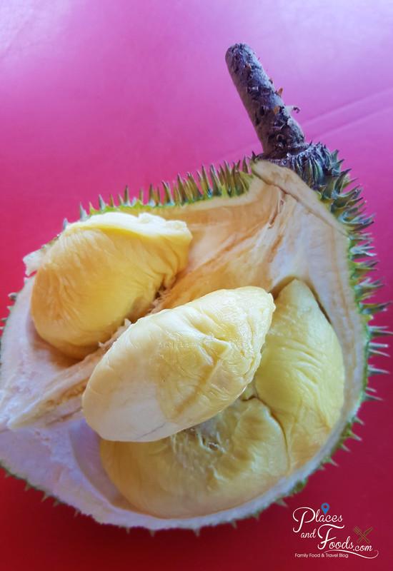 taman pertama durian stall xo