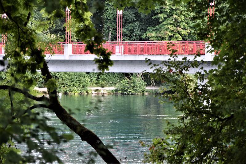 River Aar 20.07 (13)