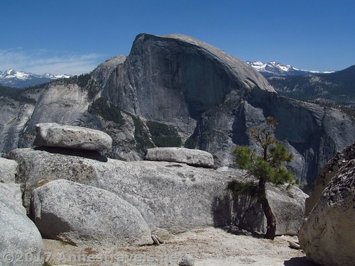 Half Dome from North Dome in Yosemite National Park, California