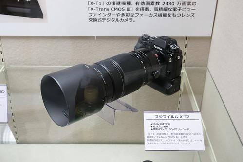 P1044293.jpg