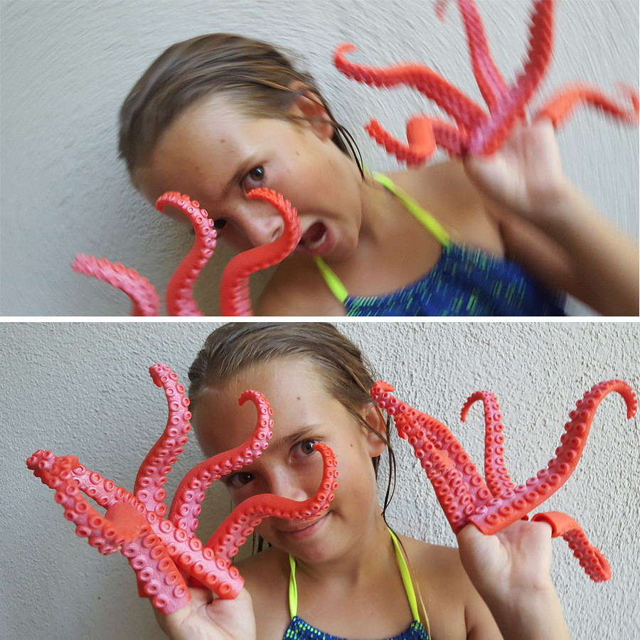 octo-bug