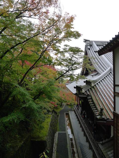 206-Kyoto