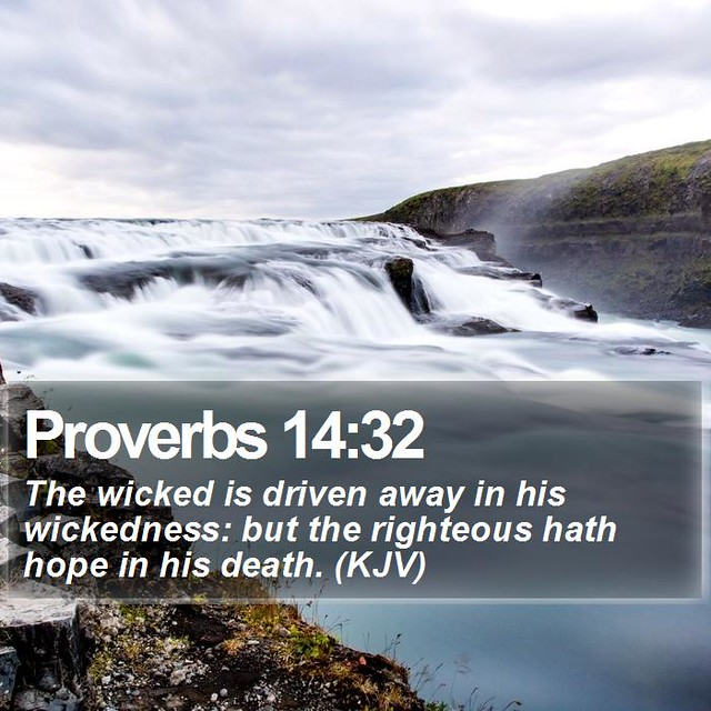 Daily Bible Verse - Proverbs 14:32