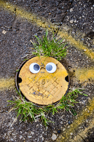 Googly-Eye Bombing Downtown Greenville-39