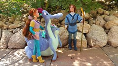 Quest for Camelot Doll Collection
