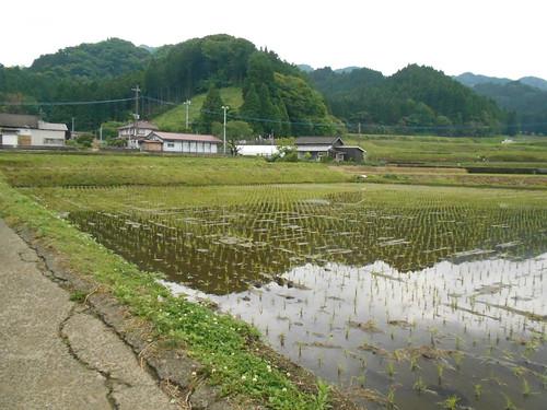 jp-takamori (10)