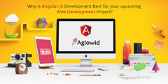 angular js development technource