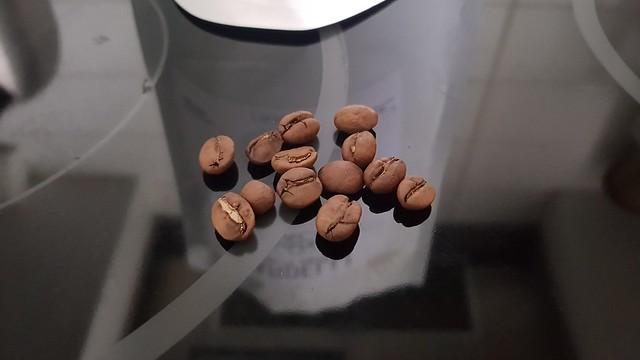 San Igncio beans