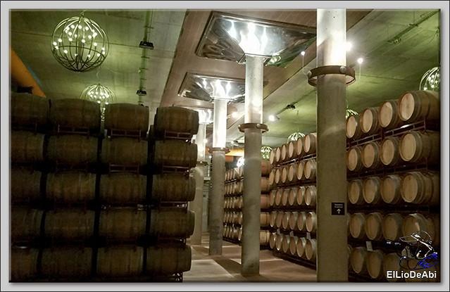 Museo del Vino Pagos del Rey y visita a Toro (9)