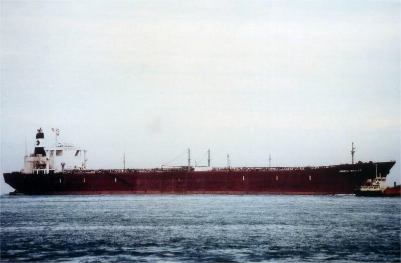Ambra Whaler