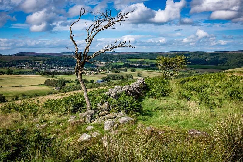 Descending to Whittondean