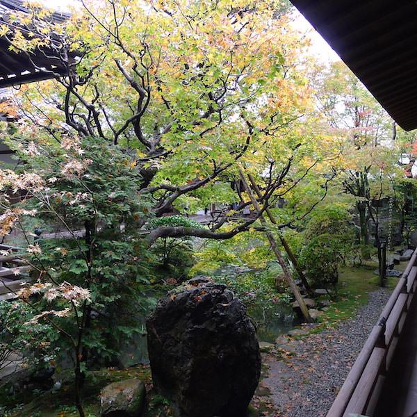 203-Kyoto