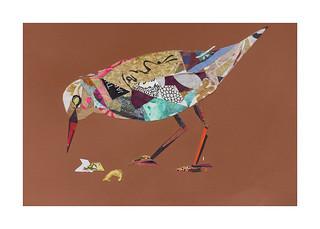 Bird #14