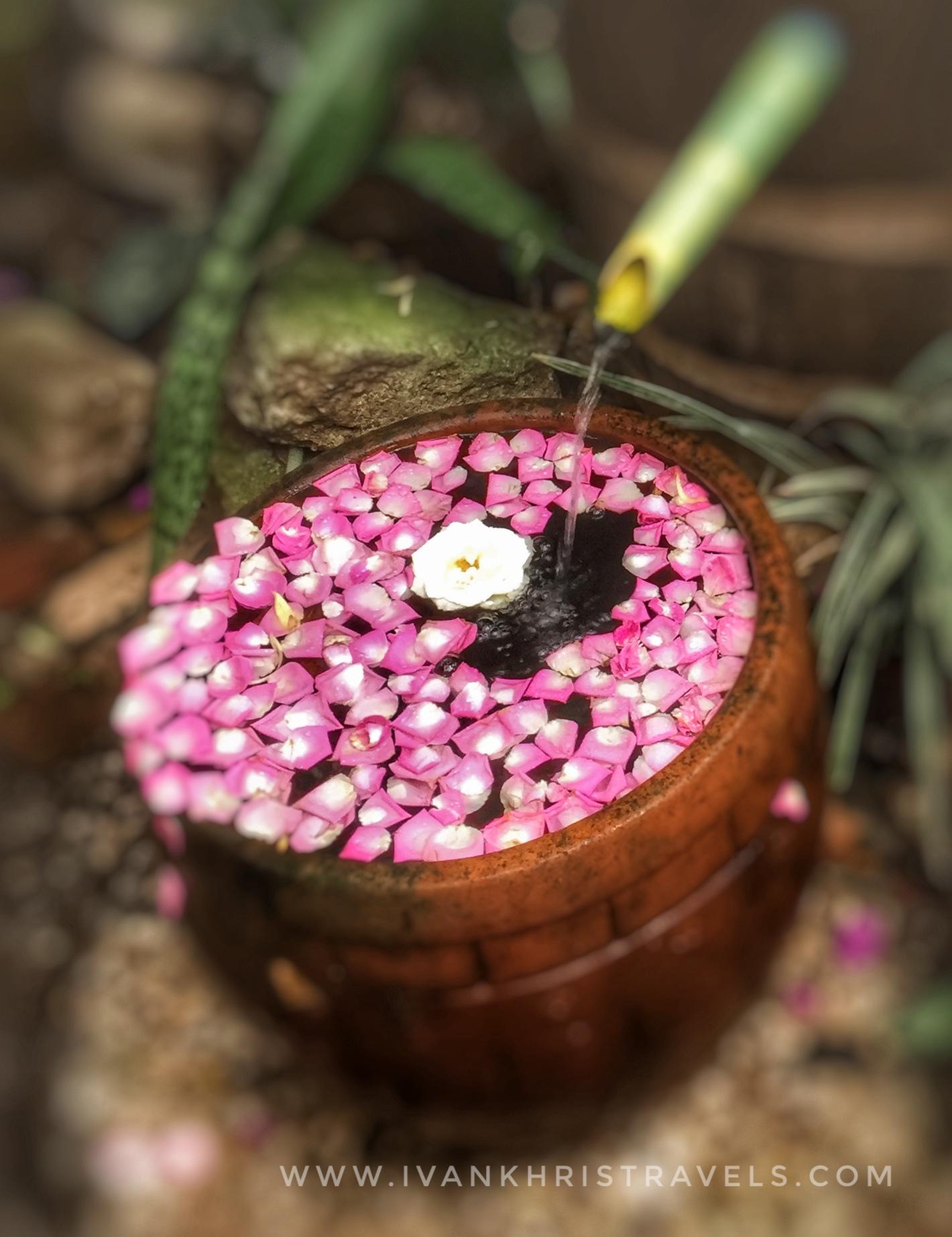 Sonya's Garden fountain with petals