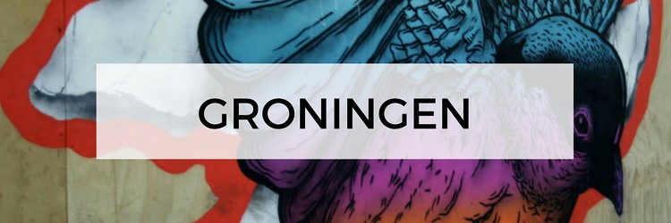 City guide Groningen, plan your trip to Groningen, The Netherlands | Your Dutch Guide