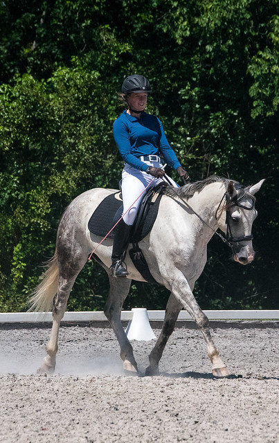 20170709 Grif Dressage Tests-23