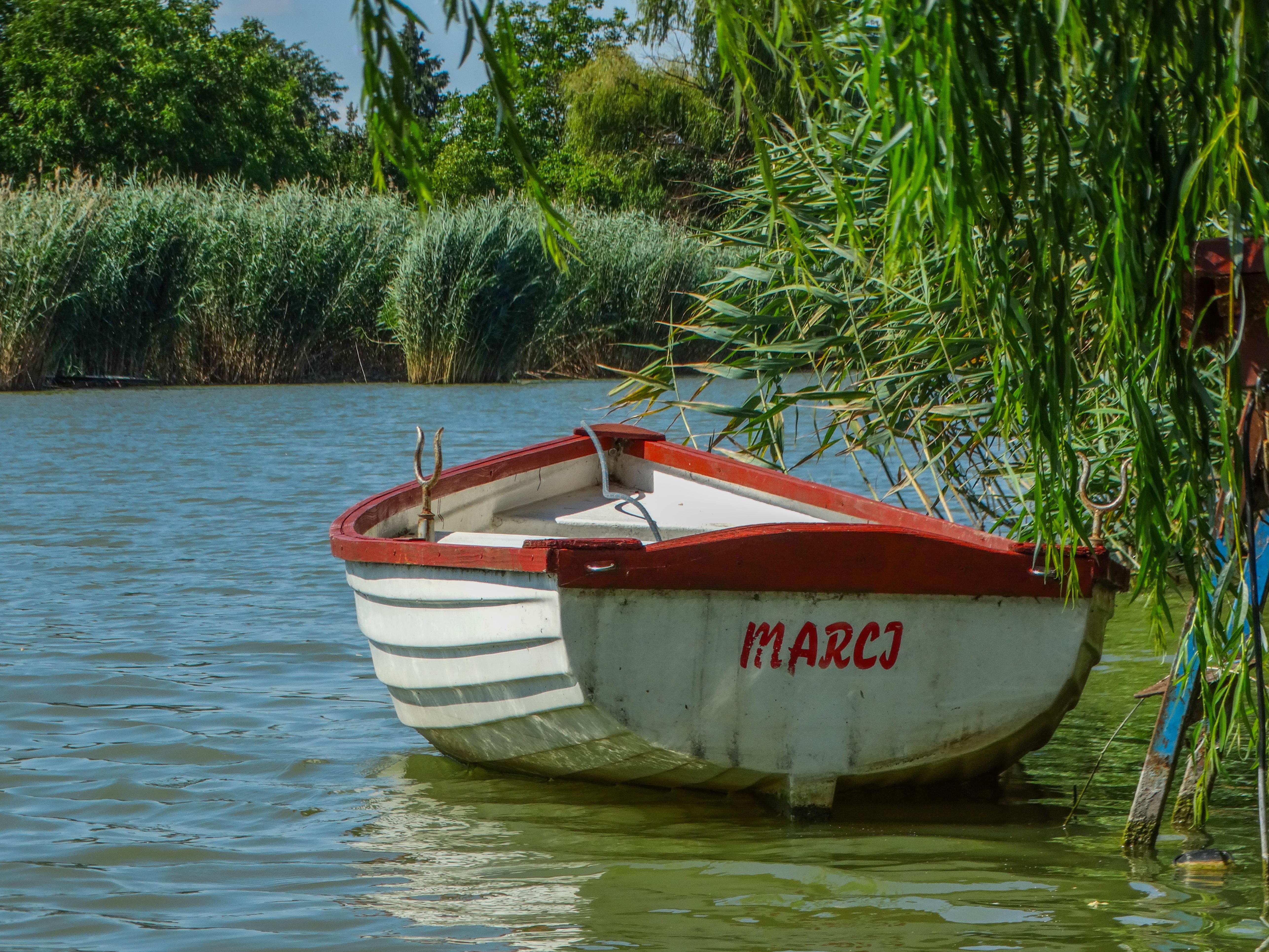 Elszabadult csónak