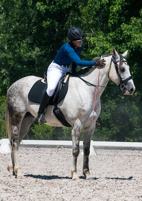 20170709 Grif Dressage Tests-47
