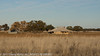 Old farmhouse-NE of Narrandera, NSW