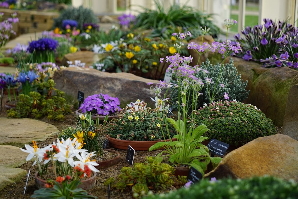 The Alpine House - RHS Garden Harlow Carr, Harrogate, North Yorkshire