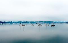 Town Dock, Long Island