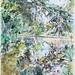Botanic Garden Lake - Watercolour and indian ink 2017