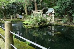 Photo:Pond and small shrine at Niikawa Shrine (新川神社) By Greg Peterson in Japan