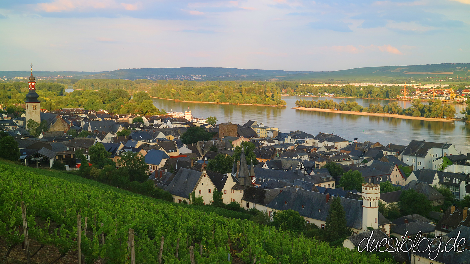 Ruedesheim Rheingau Travelblog duesiblog 095