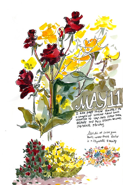 Sketchbook #104: Plants I Met