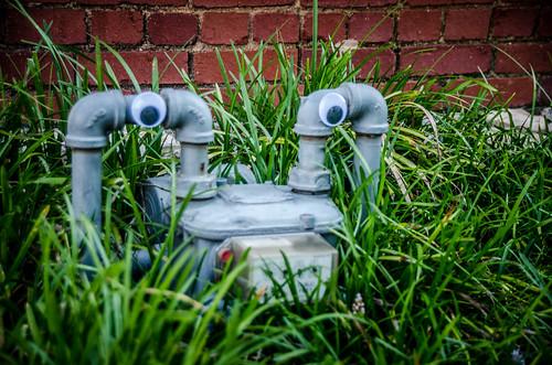 Googly-Eye Bombing Downtown Greenville-2