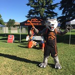 Wolfie in front of tent (Miranda Pham photo)