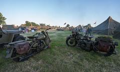 Harley in Carentan
